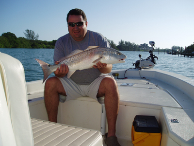 Sarasota fishing charters reds drag on charters for Sarasota fishing charters