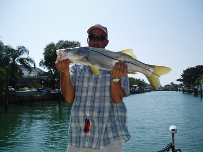 Sarasota fishing charters snook drag on charters for Sarasota fishing charters